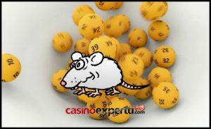Lotto Rotta